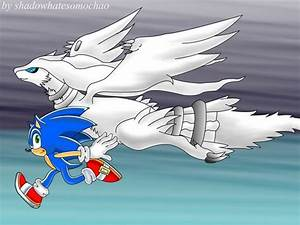 Sonic and Reshiram by shadowhatesomochao on DeviantArt