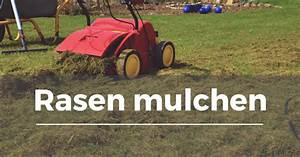 Rasenschnitt Liegen Lassen : rasen mulchen garten schule ~ Lizthompson.info Haus und Dekorationen