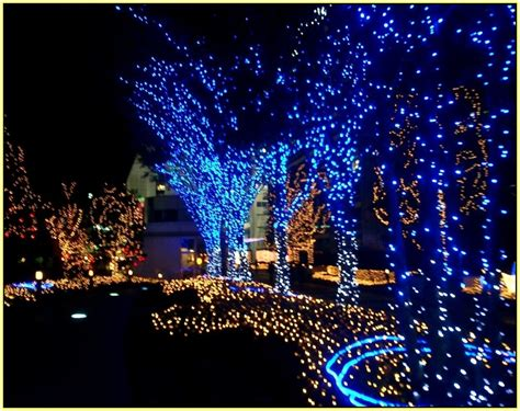 blue led outdoor lights home design ideas