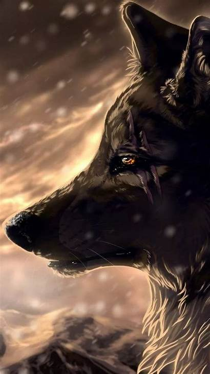Wolf Cool Android Wallpapers Resolution Miguel Phone