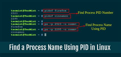 how to find a process name using pid number in linux