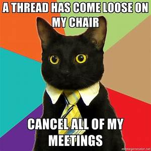 Business Cat via Meme Generator | Fun | Pinterest
