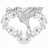 Hummingbird Coloring Zentangle Pagina Colibri Coloritura Flowers Drawing Kolibri Boek Kolibrie Hummingbirds Livre Freehand Sketch Drawn Doodle Kleurend Illustratie Libro sketch template