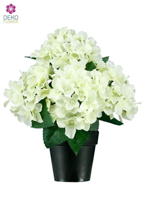 hortensien überwintern im topf k 252 nstliche hortensien im topf weiss ca 27cm