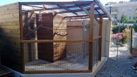 voliere en bois exterieur construction voliere exterieur