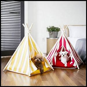 tipi teepee tent dog house pets pinterest teepees With dog and teepee