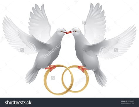 wedding doves with rings symbol of love and wedding