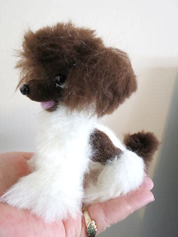 huxtable  poodle toy poodle blog parti poodle june