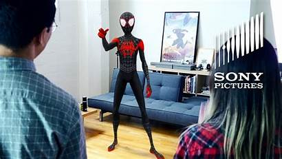 Spider Into Verse Screen Vr Phone Sumber