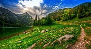 wallpaper, , , sunlight, , landscape, , forest, , mountains, , hill