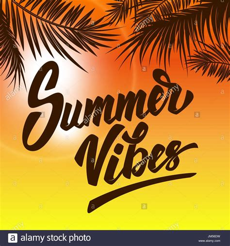 summer vibes hand drawn lettering  background  palm