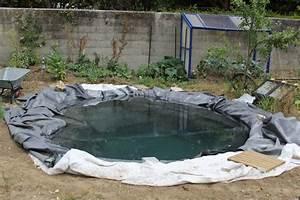 Plante Pour Bassin Extérieur : faire un bassin artificiel dans son jardin aquaponie ~ Premium-room.com Idées de Décoration