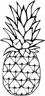 Pineapple Coloring Sweet Caribbean Print Clip sketch template
