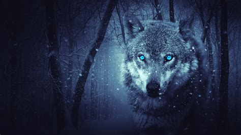 Beast Scary Wolf Wallpaper by Wallpaper Wolf Blue Scary Snowfall Winter