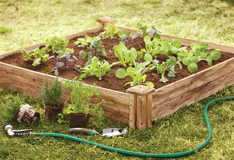 create  raised bed  wooden sides   home depot