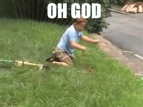 Dog Sprinkler Meme - stop gif find share on giphy