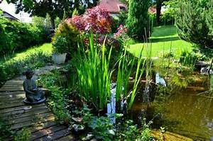 Fontaine Pour Bassin A Poisson : bassin de jardin pour poissons quelles sortes comment les installer et les soigner ~ Voncanada.com Idées de Décoration