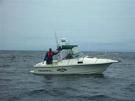 Salty Dog Boat Name by Salty Dog Identification Www Ifish Net