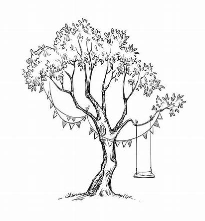 Tree Swing Sketch Baum Boom Croquis Drawing