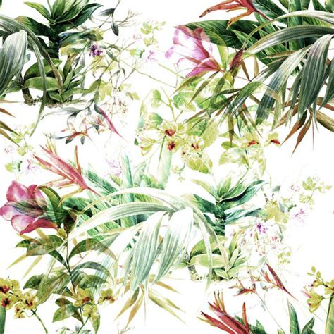 botanical wallpaper luxe walls