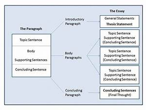 Sample Of An Essay Paper Types Of Essay Structures How To Write An Essay Proposal also Persuasive Essay Thesis Types Of Essay Structures Dissertation Topic Help What Are The Types  Analysis And Synthesis Essay