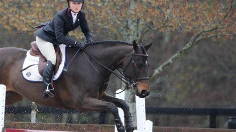gamecocks revel   equestrian championship  state