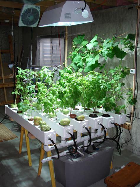 Gardening Indoors by Indoor Hydroponic Garden Hid Metal Halide Plant Grow