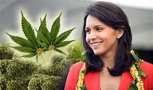 Decriminalize Marijuana Congresswoman Tulsi Gabbard