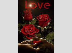 Love Rose Animation Gif