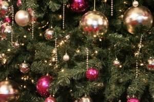 christmas tree alive  green