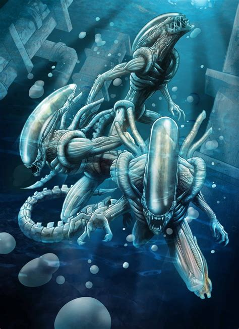 Best Xenomorph Drawings Ideas And Images On Bing Find What You