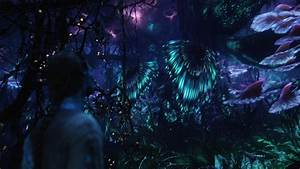 planet pandora | Pandora at night is so beautiful ...