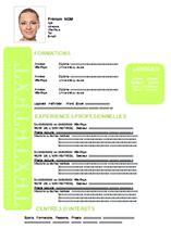 Matrice Cv Word by Matrice Cv Exemples De Cv Professionnel Jaoloron