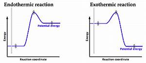 How Are Exothermic And Endothermic Graphs Designed