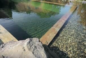 Natural Pond Swimming Pools Design