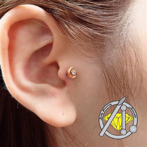Vanità Piercing Fresh Tragus Piercing With Anatometal 18karat Solid Yellow