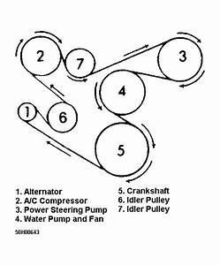 1995 Jeep Grand Cherokee Serpentine Belt Routing And Timing Belt Diagrams