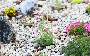 Gestaltung Kleiner Steingarten : einen steingarten selber anlegen ~ Markanthonyermac.com Haus und Dekorationen