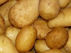 Kartoffeln Im Schnellkochtopf : pellkartoffeln im schnellkochtopf anleitung kartoffeln ~ Watch28wear.com Haus und Dekorationen