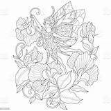 Angel Coloring Adult Flower Hand Drawn Vector Abstract Illustration Royalty Thailand sketch template