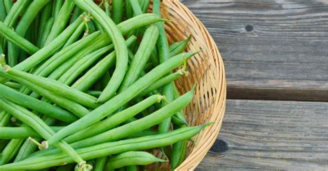 haricots verts cuisin駸 comment cuire des haricots verts