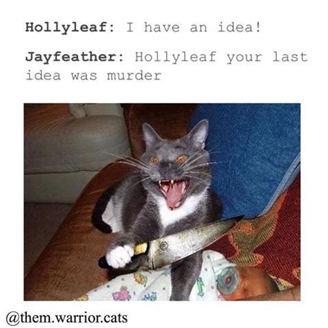 Funny Cat Memes Tumblr - image result for warrior cats tumblr posts warrior cats pinterest warrior cats cat and
