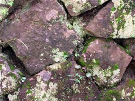 natural stone wall moist photo