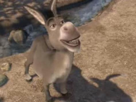 donkey wikishrek  wiki   shrek