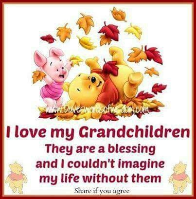 grandchildren grandkids quotes loved words daveswordsofwisdom aa ba ak0 without blessing than imagine loves friends
