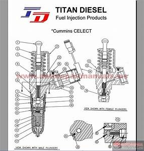 Cummins Celect Injector Parts List