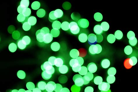 blurred christmas lights green picture free photograph