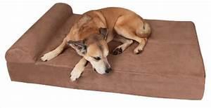 Top 10 best orthopedic dog bed reviews 2018 models for Big barker dog beds amazon