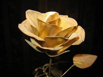 Gold Rose Wallpapers Flowers Golden Background Roses