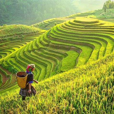 tak   indonesia  destinasi  terasering